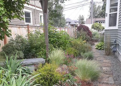 Side yard planting with arbor and bench
