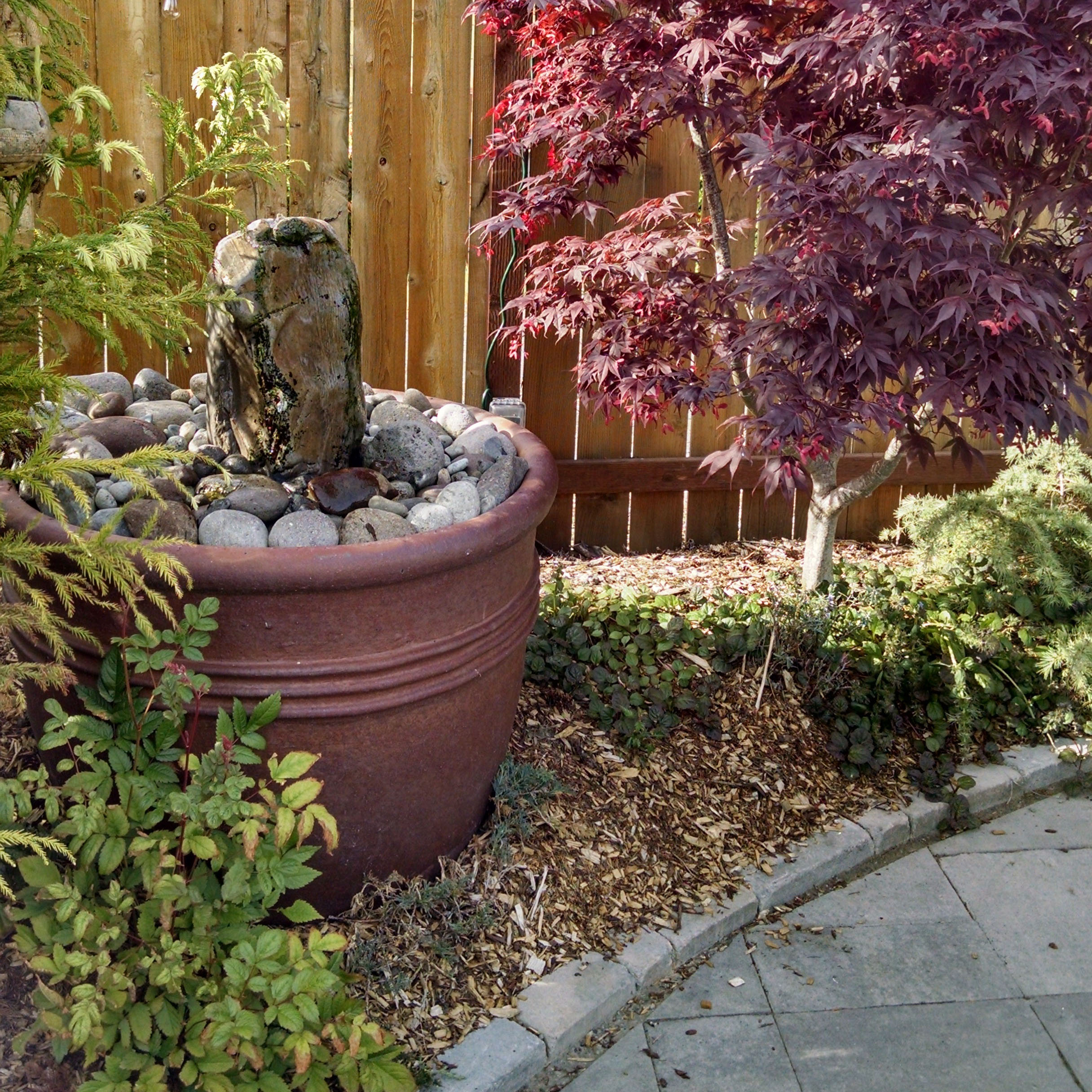 water feature in backyard landscaping