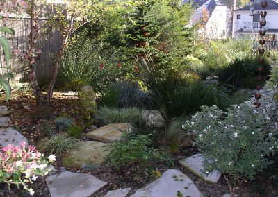 Stepping stones and lush garden of pacific northwest plants